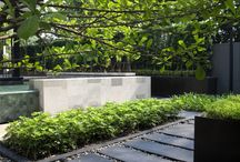 Contemporary Garden Spaces