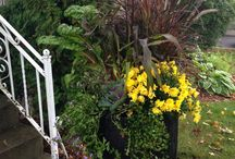 Exterior Fall Arrangments / We love doing residential and commercial exterior arrangements!
