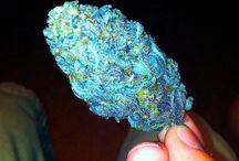 Nice Weed médicinale