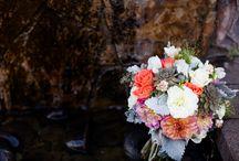 Weddings / Oregon Wedding Photographers