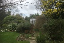 Topiary & Training