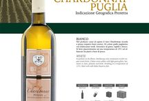 Cantine della Bardulia, Linea Selezione / I vini di Cantine della Bardulia, Barletta, nella raccolta Linea Selezione