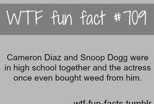 Fun facts :P