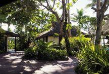 The Big Trip: Fiji