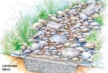 Functional rain garden