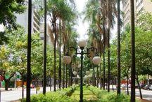 Painel semântico Geografia Centro Oeste/Goiás
