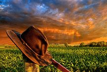 PHIL KOCH photo galery