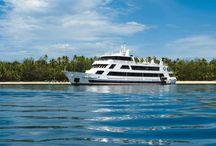 FIJI - Blue Lagoon Cruises Fiji / Blue Lagoon Cruises Fiji