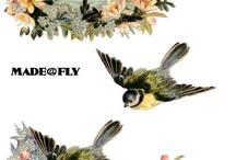 3d-Vogels