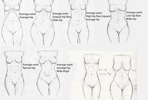 Study Woman Anatomy