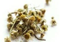 I rimedi delle erbe