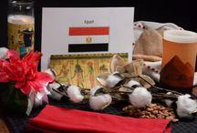 Experience Egypt