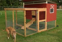 The Barnyard / Inspiration for our farm (chickens and pigs)