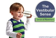 Balance System in Pediatric / All about Vestibular