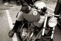 Motory i kobiety