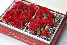 Cutii cu flori / Flower boxes