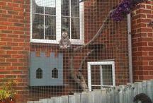 outdoor cat enclosure / and cat staff