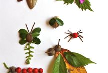 Insects for art ideas