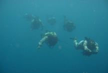 ATTACK DIVERS