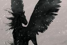 Pegasus / by Renae Maxton
