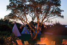 Beautiful Campfires!