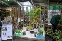 RHS Pop Up Gardens