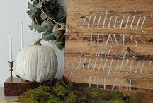 | autumn vibes