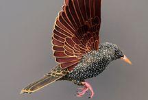 Paper bird sculptures / Diana Beltran Herrera