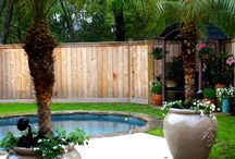Pool & Spa Landscaping Ideas