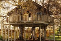Cubby and Tree Houses