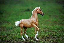 Model horses, model animals