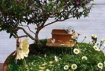 Piccoli giardini / Idee