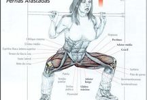 Exercício - Musculação