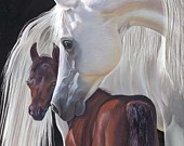 Equine art / by Phyllis Miller
