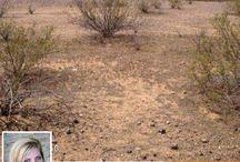 SOLD! Over 13-Acre Of Land! Chance To Built Your Dream Home / 0 N 235th Ave 0, Wittmann, AZ 85361 | Make this property yours! Call DeAnn at 480-282-1010 or send her an email at dfry@fryteamaz.com. You may also visit the website at www.FryTeamAZ.com for more information.