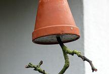 Vögel Winter