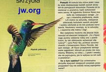 CZY TO NIE ZOSTAŁO ZAPROJEKTOWANE ? / Seria przykładów na wielkość projektanta Jehowy Boga