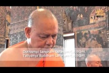 Lord Buddha Monks Chanting