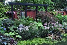 zahrada ve stinu