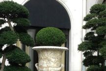 Urns and Topiary