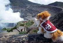 Reveille on the Road / Follow Miss Reveille as she travels around the world with study abroad students. Find more pictures by searching #revontheroad on Instagram, Facebook and Twitter.