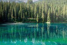 La bellezza della Natura.
