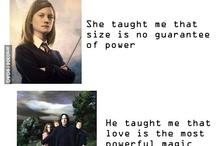Potter &Madness