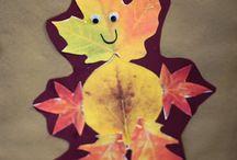 liście i z liści