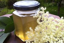 Recipes - elderflower