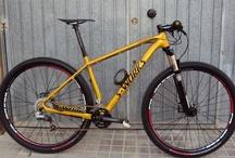 Bici / Mountain bike