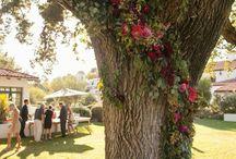 Amanda & Max / Wedding