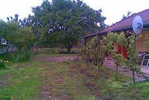 Online munkák napi 30 perc és szabad vagy. / 10 perces feladatok : http://www.viewtrakr.com/videopreview.php?u=wz1oznB4Bl&pak=1&board=4  https://trafficmonsoon.com/land.php?id=2&ref=Eliteaffilit http://www.growyourlistandincome.com/autores1.php?r=eliteaffilite  http://www.x100k.com/AMP.php?eliteaffilite http://fivedollarfunnel.com/?ID=144596 Itt többet is találsz : http://marketingotthon.blogspot.hu/ itt leírások :http://teremtsmagadnak.hu/