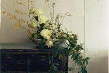 flower botanical