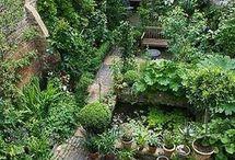 Muur fontijn